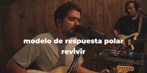 MODELO DE RESPUESTA POLAR - REVIVIR NANUK VIDEO